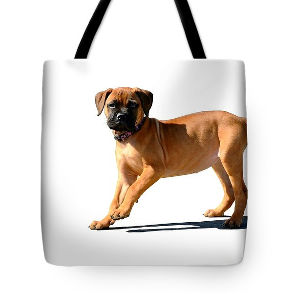 Me And My Shadow 3 Tote Bag by Dale   Ford
