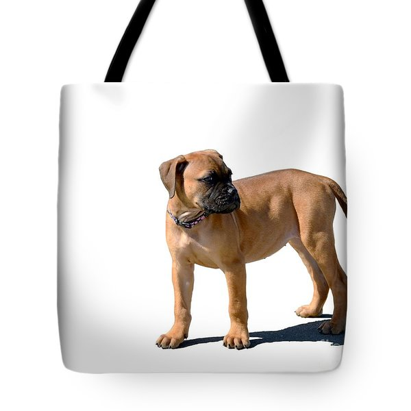 Me And My Shadow 4 Tote Bag by Dale   Ford