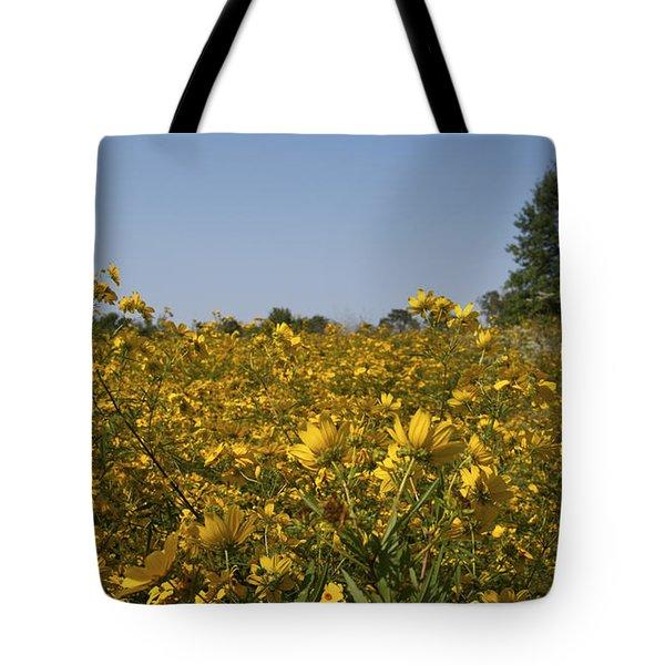 Meadow At Terapin Park Tote Bag