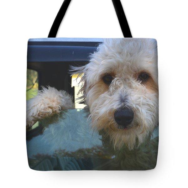 Meet Lola Tote Bag by Sandi OReilly
