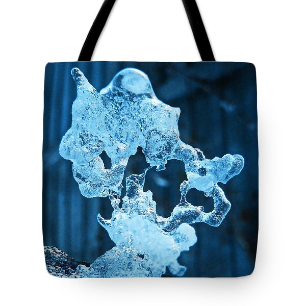 Tote Bag featuring the photograph Meet The Ice Sculpture by Steve Taylor