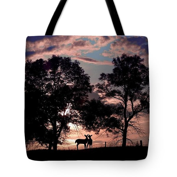 Meeting In The Sunset Tote Bag by Bill Stephens