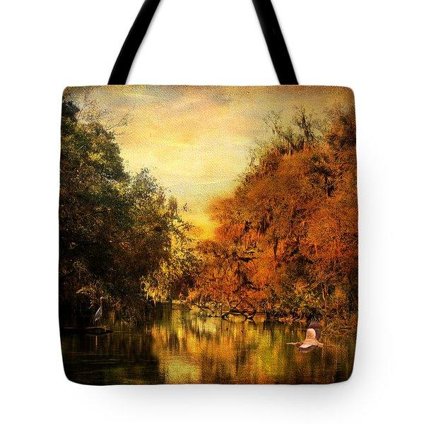 Meeting Of The Seasons Tote Bag by Jai Johnson