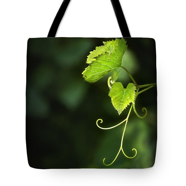 Memories Of Green Tote Bag by Evelina Kremsdorf