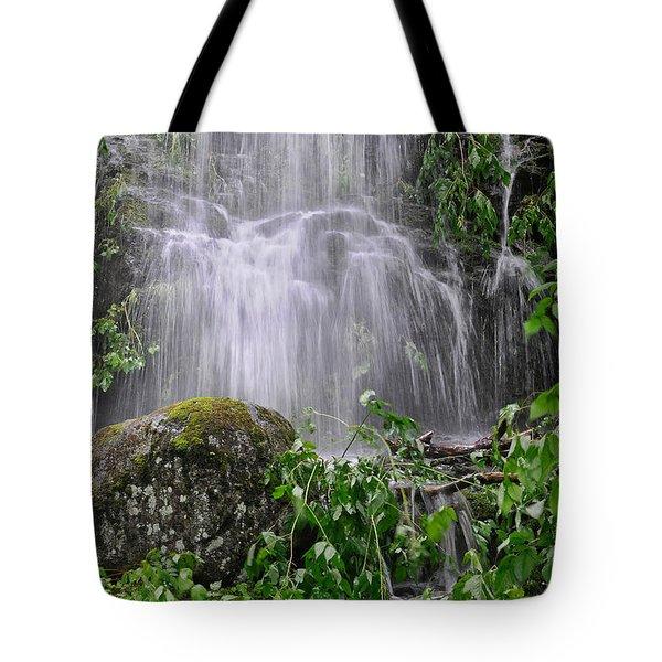 Mendenhall Glacier Flooding Waterfall Juneau Alaska 1542 Tote Bag