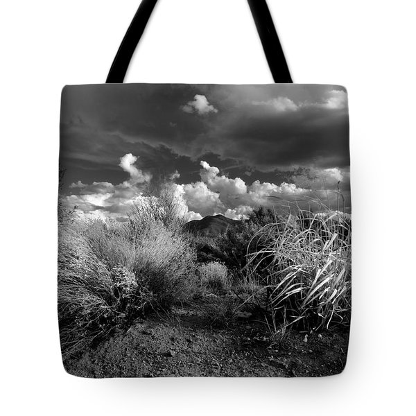 Tote Bag featuring the photograph Mesa Dreams by Ron Cline