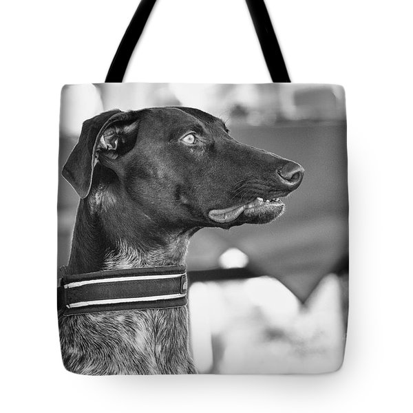 Mesmerized Tote Bag by Eunice Gibb