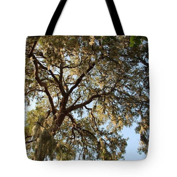 Mesmerizing Tote Bag by Aimee L Maher Photography and Art Visit ALMGallerydotcom