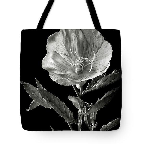Tote Bag featuring the photograph Mexican Evening Primrose In Black And White by Endre Balogh
