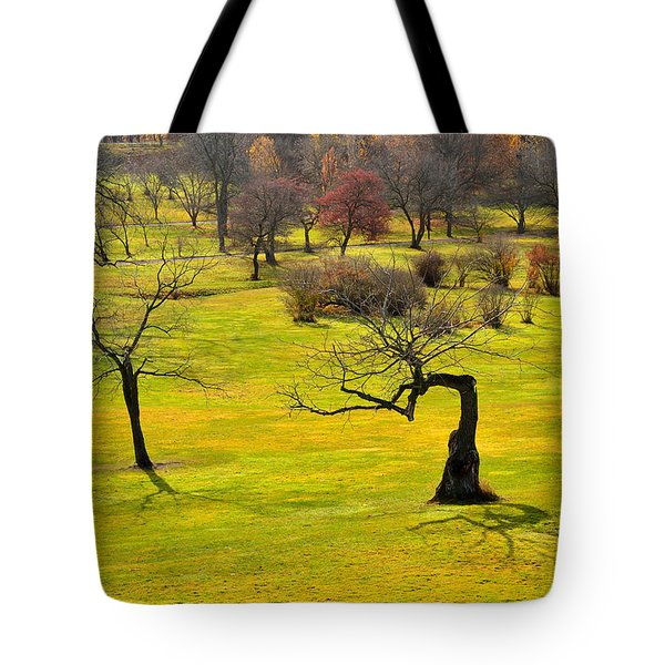 Middle Earth Tote Bag by Joshua McCullough