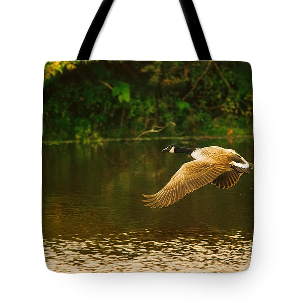 Midmorning Launch Tote Bag