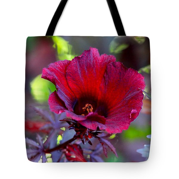 Midnight Romance Acetosella Red Hibiscus Tote Bag