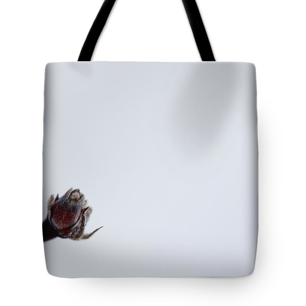 Midwinter Reflection Tote Bag