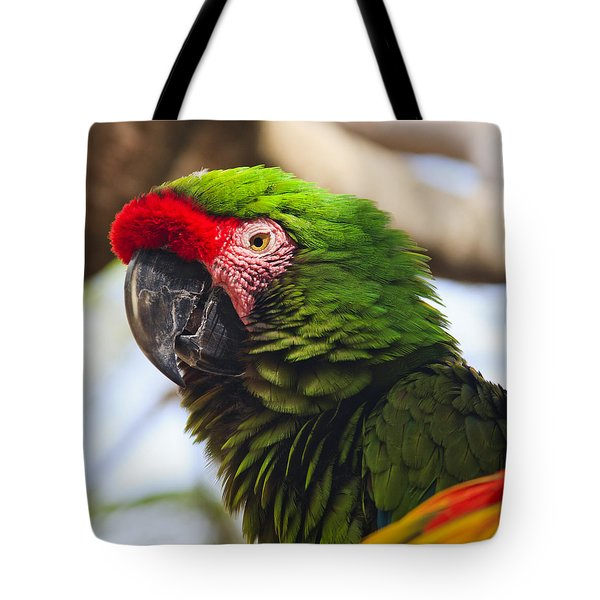 Military Macaw Parrot Tote Bag