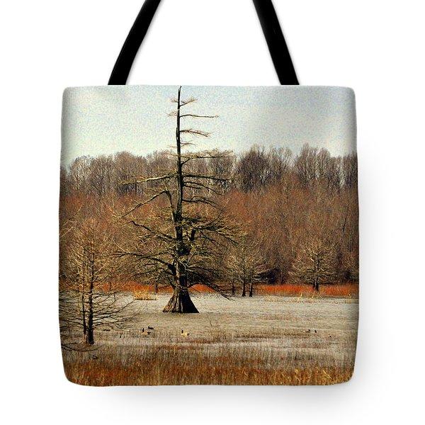 Mingo Swamp 1 Tote Bag by Marty Koch