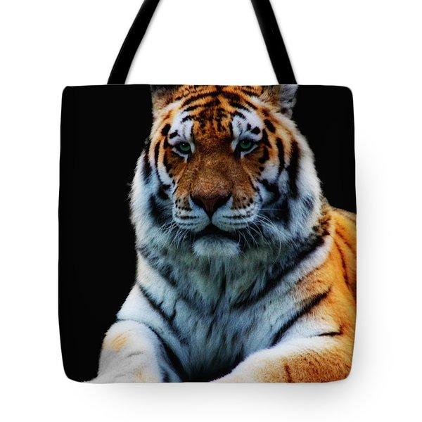 Minou Tote Bag by Claudia Moeckel