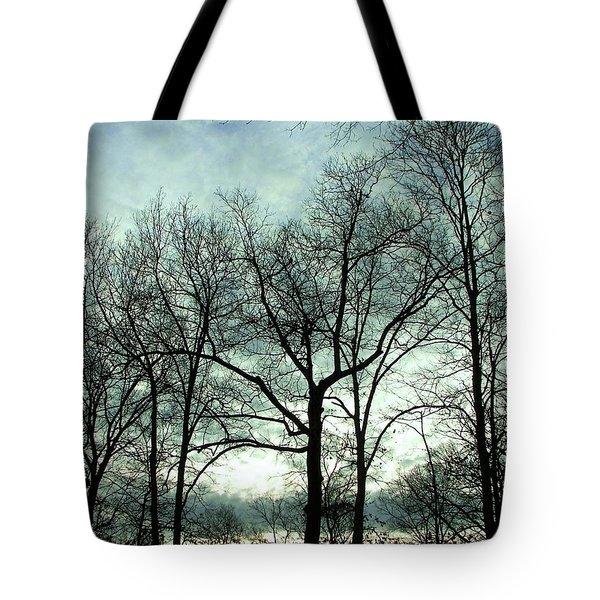 Tote Bag featuring the photograph Mirage In The Clouds by Pamela Hyde Wilson