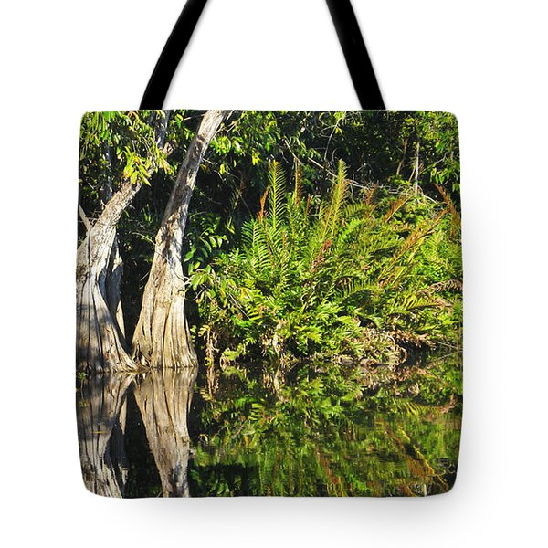 Tote Bag featuring the photograph Mirror Pond by Anne Mott