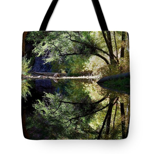Tote Bag featuring the photograph Mirror Reflection by Tam Ryan