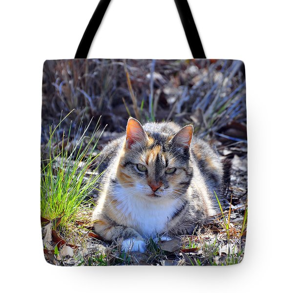 Miss Kitty Tote Bag by Al Powell Photography USA
