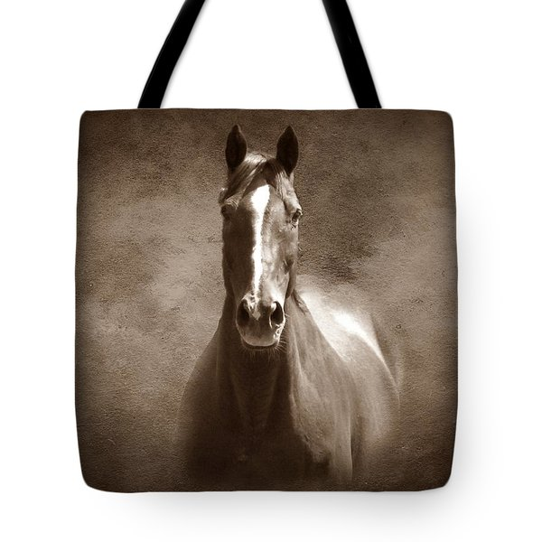 Misty In The Moonlight S Tote Bag