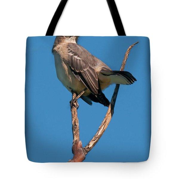 Mock One Tote Bag