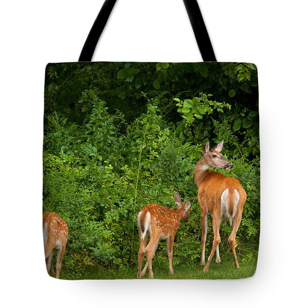 Mom And Two Tote Bag by Karol Livote