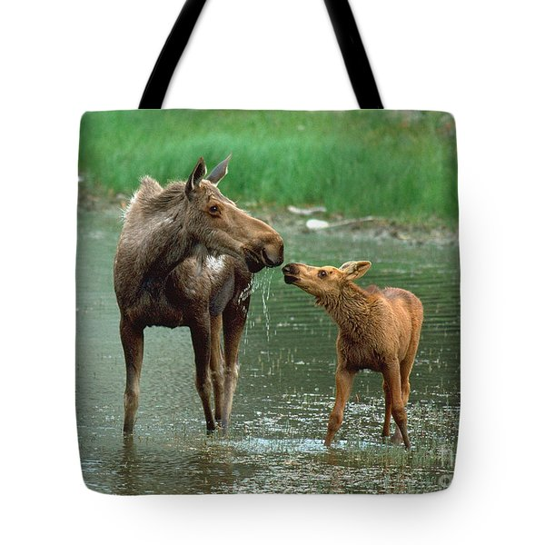 Mommy And Me Tote Bag by Doug Herr