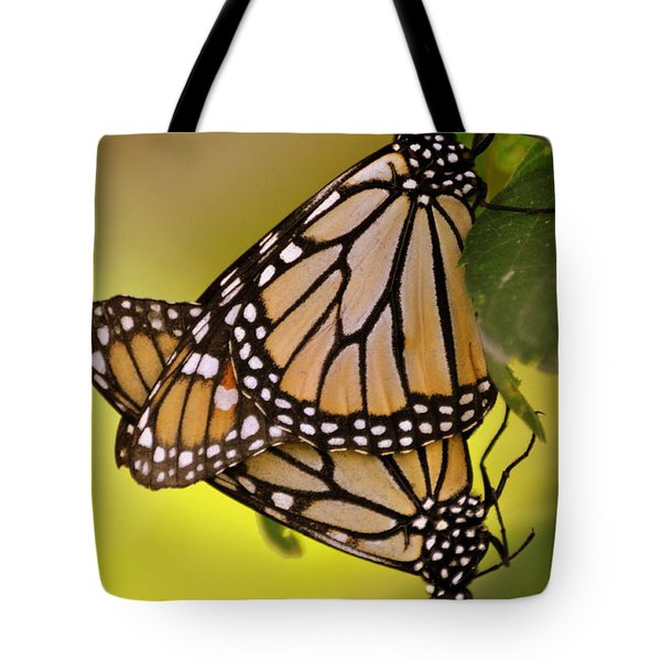 Monarch Bliss Tote Bag by Marty Koch