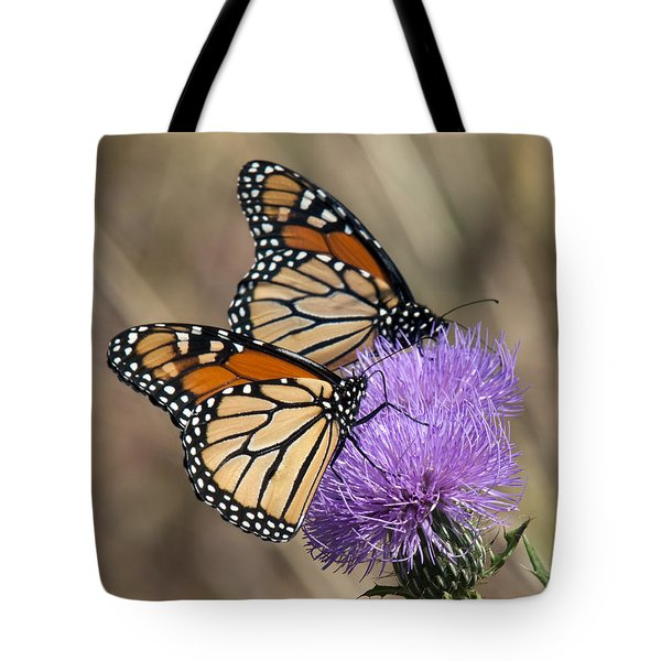Tote Bag featuring the photograph Monarch Butterflies On Field Thistle Din162 by Gerry Gantt