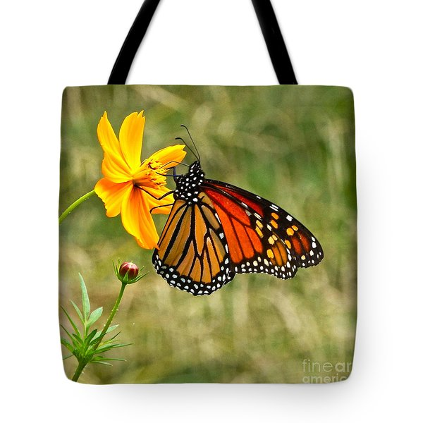 Monarch Butterfly And Yellow Cosmos Tote Bag by Byron Varvarigos