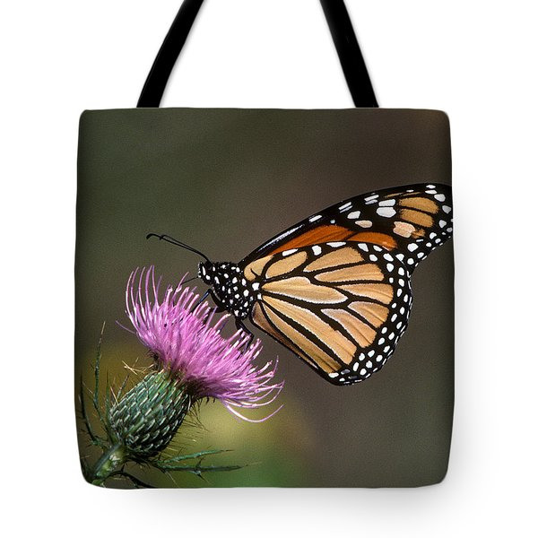 Tote Bag featuring the photograph Monarch Butterfly On Thistle 13a by Gerry Gantt