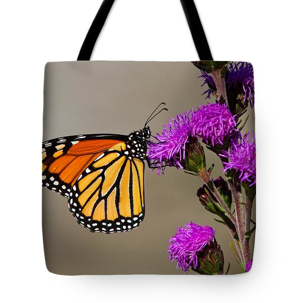 Monarch Tote Bag by Mircea Costina Photography