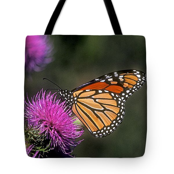 Tote Bag featuring the photograph Monarch On Thistle 13f by Gerry Gantt