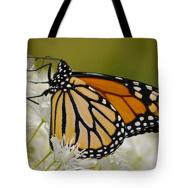 Monarch  Tote Bag by Rodney Campbell