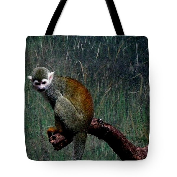 Tote Bag featuring the photograph Monkey by Maria Urso