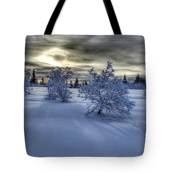 Moody Snow Scene Tote Bag by Michele Cornelius