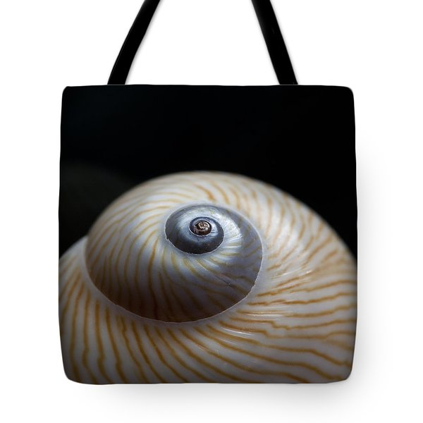 Moon Shell Tote Bag by Carol Leigh