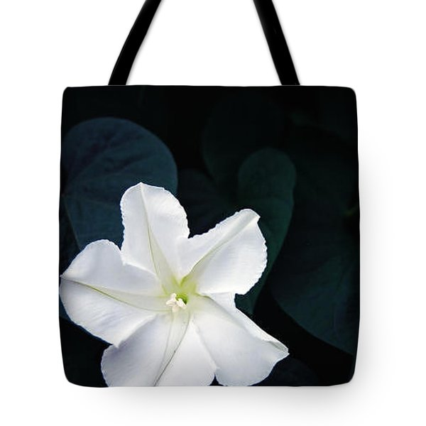 Moonflower Tote Bag by Amy Williams