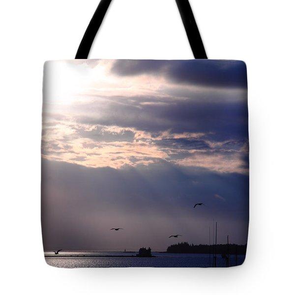 Moonlight Flight Tote Bag