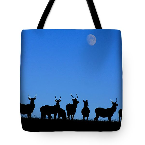 Moonlighting Tote Bag