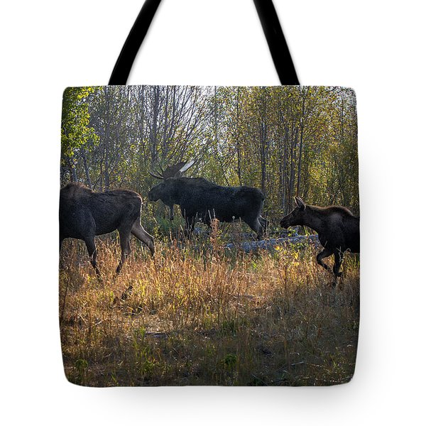 Moose Family Tote Bag