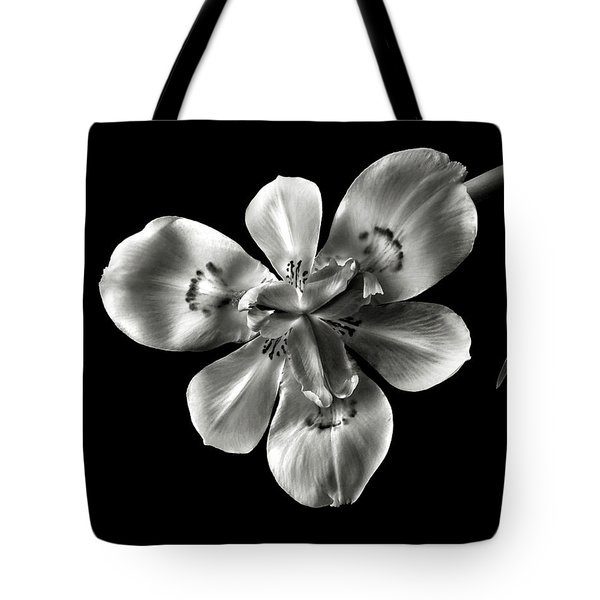 Morea Lily In Black And White Tote Bag