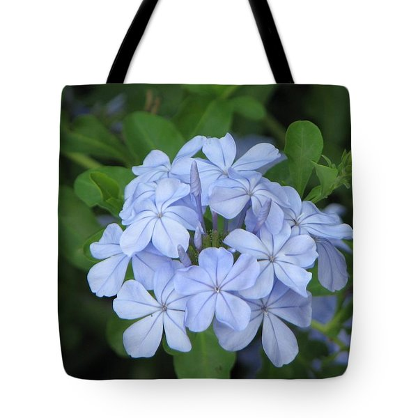 Tote Bag featuring the photograph Morning Blues by John Glass