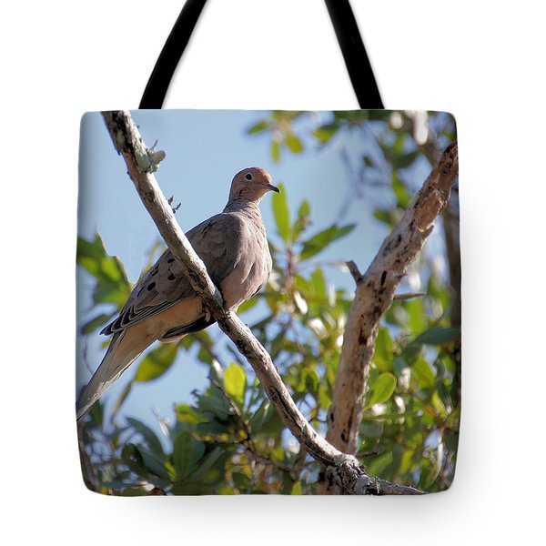 Tote Bag featuring the photograph Morning Dove by Rosalie Scanlon