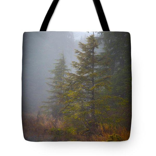 Morning Fall Colors Tote Bag by Mike Reid