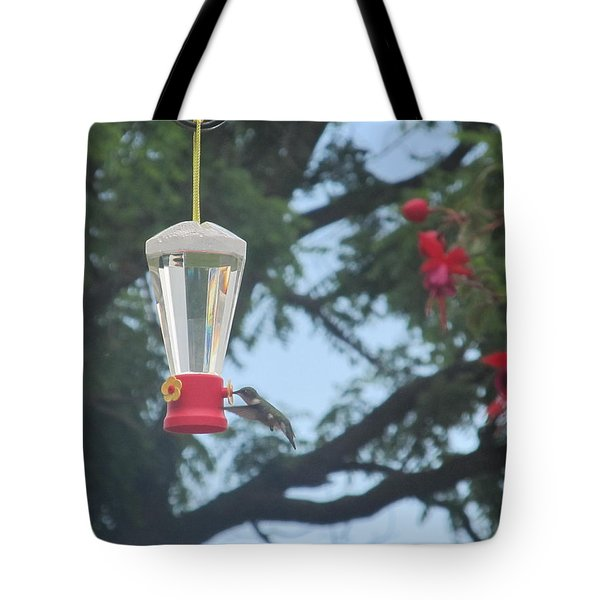 Tote Bag featuring the photograph Morning Feed by Tina M Wenger