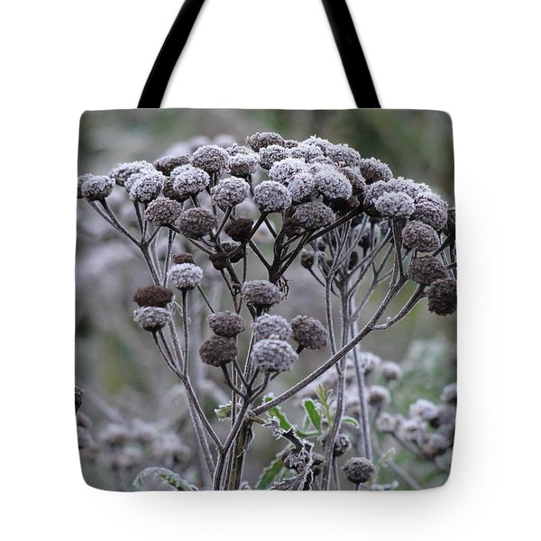 Tote Bag featuring the photograph Morning Frost by Tiffany Erdman