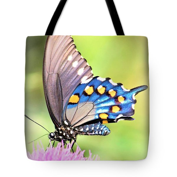 Morning Light Tote Bag by Elizabeth Budd