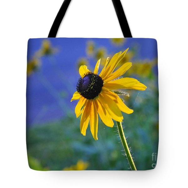 Tote Bag featuring the photograph Morning Light by Nava Thompson